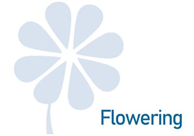 agro-uva-flowering-c.jpg