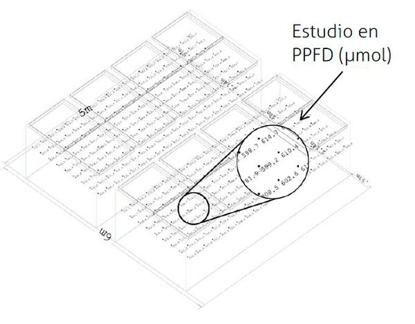 estudio-4-c.png